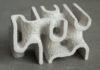 corais 3D