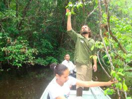 estudo biodiversidade