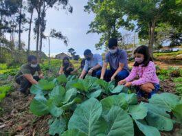 Itajubá (MG) investe em agroecologia como solução socioambiental