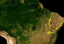 MapBiomas revela aumento do risco de desertificação na Caatinga